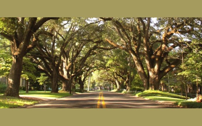 Natchitoches_700x438